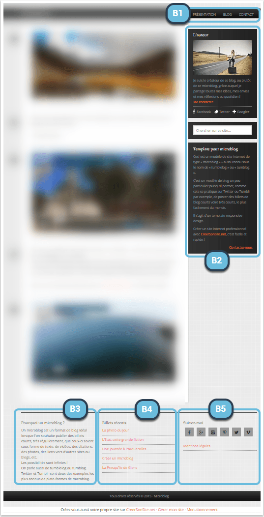 emplacements-widgets-template-microblog