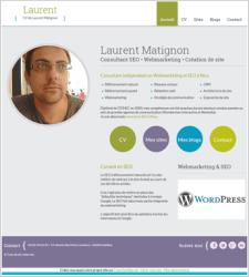 Exemple de CV en ligne