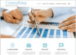 site consulting